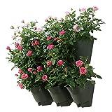 3 Sets Worth Garden sistema da giardino per innaffiamento automatico fioriera verticale