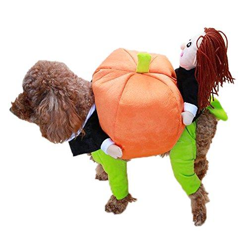 Eastlion Pet Verklärung Kostüm Hund tragen Kürbis Kleidung mit Lächeln Gesicht Größe 2