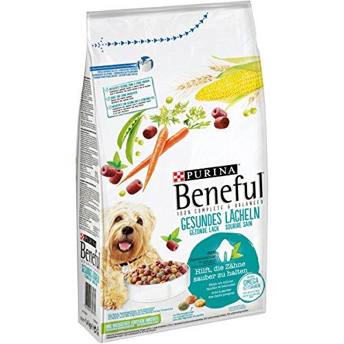 Beneful Gesundes Lächeln Hundefutter, 1er Pack (1 x 1,4 kg) Packung