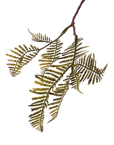 er Mini Schwertfarn Zweig KENNET, grün-gelb, 40 cm - Kunstfarn/Deko Blätter ()