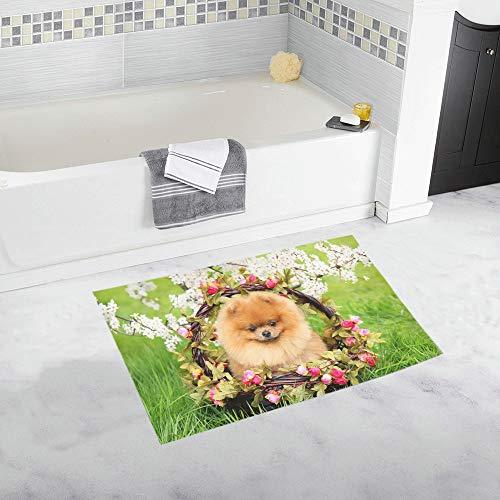 YXUAOQ Pomeranian Dog Park Cute Beautiful Dog Benutzerdefinierte rutschfeste Badematte Teppich Bad Fußmatte Boden Teppich für Badezimmer 20 X 32 Zoll -