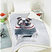 Festive Bulldog Photo Print Sherpa Backed Luxury Fleece Blanket 125cm x 155cm