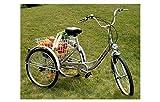 FANO-TEC Dreirad Für Erwachsene Behindertenfahrrad Erwachsenendreirad 24 Zoll Shimano 6-Gang-Kettenschaltung Neu FT-7009 Silber