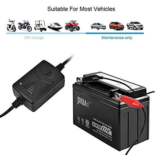 remote.S 12V 1300mA Auto Batteria Intelligente Caricatore con Protezione Multipla Caricabatterie Manutentore per Batteria al Piombo-Acido Auto, Moto, ATV, Cam