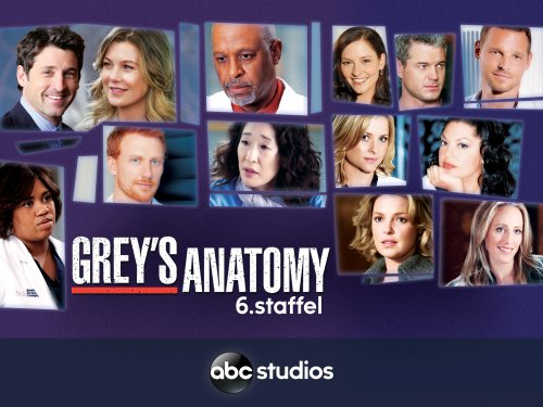 Greys Anatomy Staffel 6