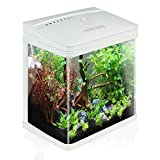 Nobleza - Nano Acquario in Vetro per Pesci Acqua Tropicali con Illuminazione a LED e Filtro Inclusa. 14 Litri, Color Bianco.