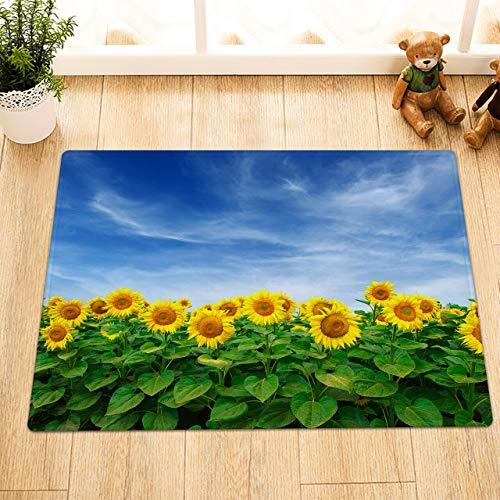 EdCott Sunflower Blauer Himmel Außentür Vorderkissen Flanell Innendekorationsmatte Küchentürmatte Badezimmermatte Schlafzimmer Teppich Hauptfarbe Quadratmatte 40x60cm Mode Persönlichkeit neu -
