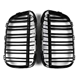 RISHIL WORLD Pair Gloss Black Double Line Front Kidney Grille for BMW F48 F49 X1 2016-2017