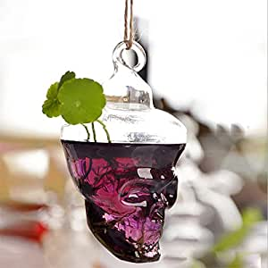 Bluelover Hydroponic Plants Garden Flower Pot Skull Shape Hanging Glass Vase