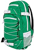 Forvert Ice Louis 25 L Skateboard Rucksack green/white