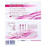 50 x David Ovulationstest Streifen 20 miu/ml LH ovulation test