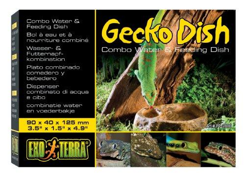 Exo Terra Gecko Dish 4