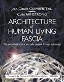 #9: The Architecture of Living Fascia: The Extracellular Matrix and Cells Revealed Through Endoscopy