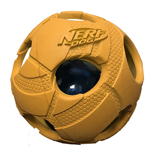 Nerf Dog Medium LED Bash Ball Tricks orange Hund Spielzeug -