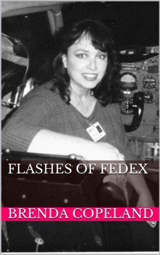 flashes-of-fedex-english-edition