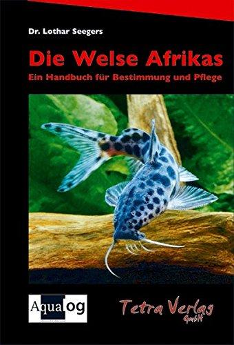 Die Welse Afrikas: Ein Handbuch für Bestimmung und Pflege