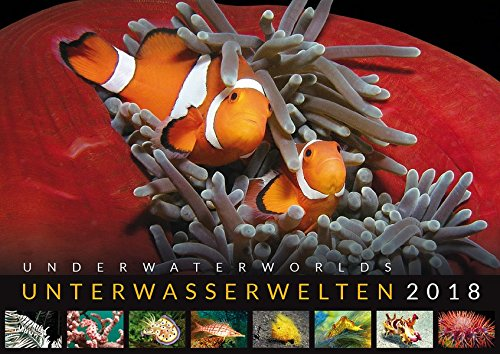 Unterwasserwelten 2018: Underwater Worlds 2018