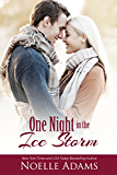 One Night in the Ice Storm (English Edition)