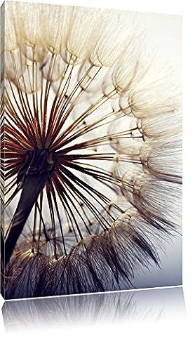 Schöne Pusteblume, Format: 120x80 auf Leinwand, XXL riesige Bilder fertig gerahmt mit Keilrahmen, Kunstdruck auf Wandbild mit Rahmen, günstiger als Gemälde oder Ölbild, kein Poster oder Plakat