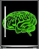 Wallario Sticker/Aufkleber für Kühlschrank/Geschirrspüler/Küchenschränke, selbstklebende Folie - 65 x 80 cm, Motiv: Menschliches Gehirn in leuchtend grüner Farbe
