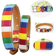 Badalink Collar para Perro Perrito Collar de Varios Colores