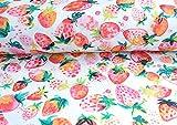 Qualitativ hochwertiger Jersey Stoff mit bunten Erdbeeren