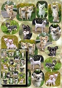Chihuahua Papier cadeau No 1 petit conception de la carte cadeau Par Starprint