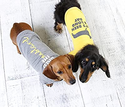 Puppy Sausage Dog Jumpers | Jumper for Small Dachshunds | Clothing for small sausage dogs from Wiener Dog World