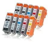 10 Druckerpatronen mit Chip und Füllstandsanzeige kompatibel zu Canon PGI-520/CLI-521 passend für Canon Pixma IP-3600 IP-4600 IP-4700 MP-540 MP-550 MP-560 MP-620 MP-630 MP-640 MX-860 MX-870