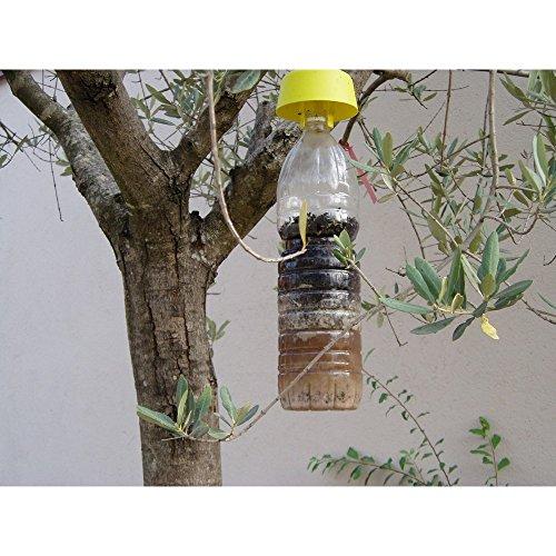 ROBERTO CARELLO 00720632 Trappola da Usare con Le Bottiglie di Plastica in con Fezione da 5 Tappi