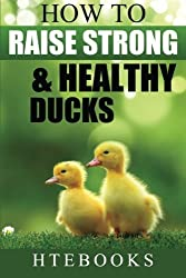 How To Raise Strong & Healthy Ducks: Quick Start Guide (How To eBooks) (Volume 49) by HTeBooks (2016-05-07)