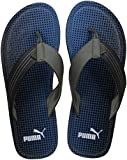 Puma Men's Ketava Graphic Idpmen Sandals