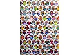 Eno Grrrting A4 Pattern paper for Gift Wrapping, Envelope Making,Card Making, Scrapbooking, Paper Crafts and Multipurpose Creative Uses pack of 10 (OWL)