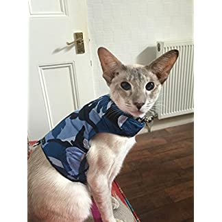 Mynwood Cat Jacket/Harness Blue Combat Adult Cat – Escape Proof 51fwi 2BdEnGL