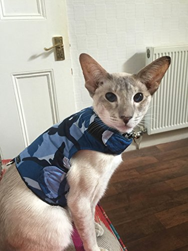 Mynwood Jacke/Geschirr für ausgewachsene Katzen, ausbruchsicher, Farbe Blau