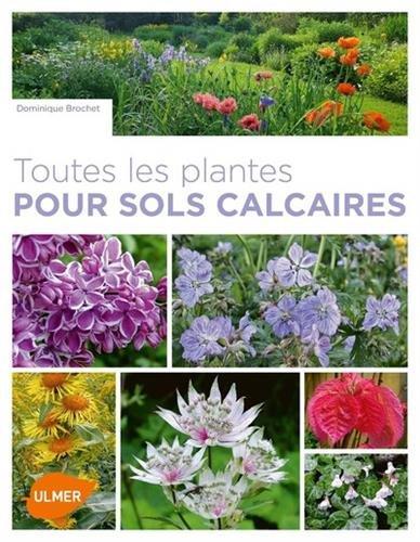 Toutes les plantes pour sols calcaires par Dominique Brochet