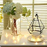 Best General Electric Christmas Trees - KEEDA 10M 100LED Outdoor String Lights, Crystal Ball Review