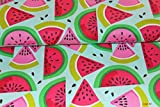 Designerbaumwolle Baumwollstoff Melonen Früchte Tutti