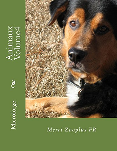 Animaux Volume 3