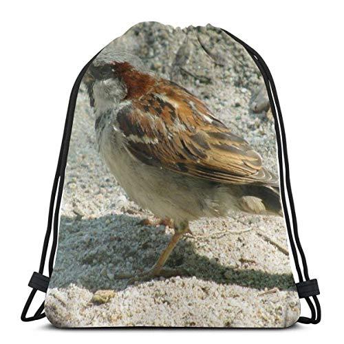 Cap pillow Bird Sparrow Drinking Water Custom Drawstring Shoulder Bags Gym Bag Travel Backpack Lightweight Gym for Man Women 16.9