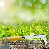 fugenkratzer malas hierbas arañazos Juntas malas hierbas Juntas limpiador stecher Jardín dispositivo