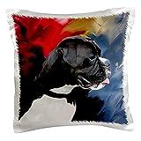 3dRose PC 3976_ 1schwarz weiß boxer-pillow Fall, 16von 40,6cm