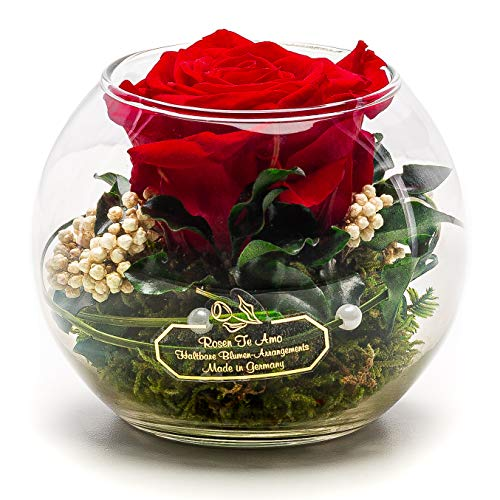Rosen-Te-Amo - Konservierte ewige rote Rose in der Kugel Vase, Blumenstrauß im Glas mit Liebe gefertigt Deko-Pflanzen; Infinity Deko-Blumen