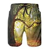 Photo de Mens Beach Shorts Swim Trunks,Majestic Mighty Oak Tree with Largely Broader Leaves Forest Sun Rays Nature Orange Green Brown_2,Summer Cool Quick Dry Board Shorts Bathing Suit par MIOMIOK