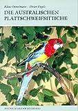AUSTRL. PLATTSCHWEIFSITTICHE - Vogels, Immelmann