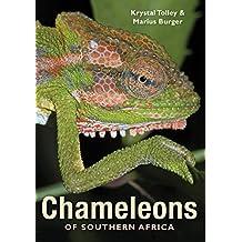 Chameleons of Southern Africa