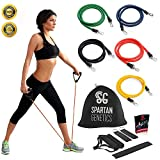 Resistance Bands Set - Great for Improving Mobility, Strength, Yoga, Burn Fat, Pilates or for Injury Rehabilitation - For Both Women and Men - 5 Premium Exercise Bands The Perfect Home/Travel Fitness - 4 Weeks Workout Plan - Lifetime Guarantee