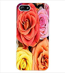 ColourCraft Beautiful Roses Design Back Case Cover for APPLE IPHONE 5S