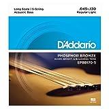 D\'Addario Cordes en bronze phosphoreux pour basse acoustique 5 cordes D\'Addario EPBB170-5, cordes longues, 45-130