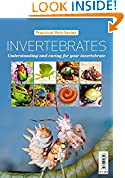 #10: Invertebrates: Understanding and caring for your invertebrate (Practical Pets Series Book 5)